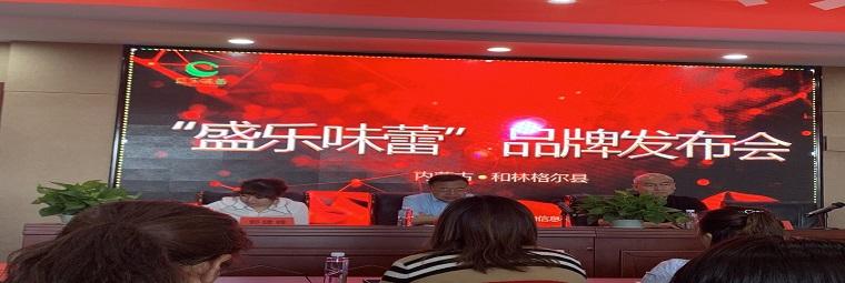 """和林格爾(er)縣""""盛樂味(wei)蕾""""區域公共品牌發布會在縣工信(xin)局召開"""